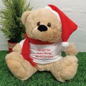 Custom Christmas Teddy Bear