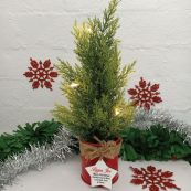 Christmas Tree Artificial Cyprus Pine LED Lights - Pop
