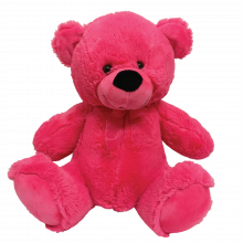 Teddy Bear 40cm Hot Pink Plush