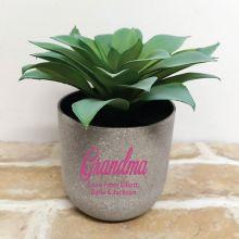 Aeonium Succulent in Personalised Grandma Pot