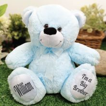 Big Brother Teddy Bear 30cm Light Blue