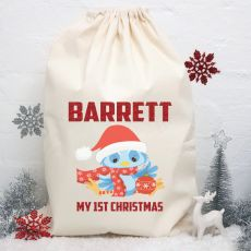 Personalised Christmas Santa Sack - Blue Bird