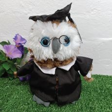 Graduation Owl with Cape