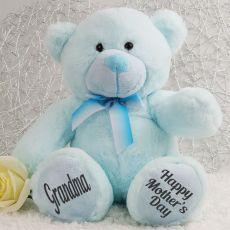 Grandma Mothers Day Teddy Bear Plush 30cm Light Blue