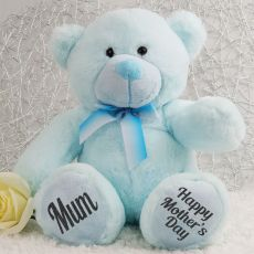 Mothers Day Teddy Bear Plush 30cm Light Blue