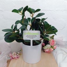 Artificial Plant with Personalised Picket