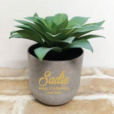 Aeonium Succulent in Personalised  21st Birthday Pot