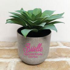 Aeonium Succulent in Personalised  40th Birthday Pot