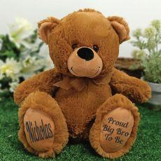 Big Brother Teddy Bear 30cm Brown