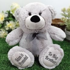 Big Brother Teddy Bear 30cm Silver Grey
